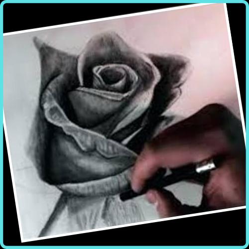 Tips a la Hora de trabajar una Rosa a Lapiz