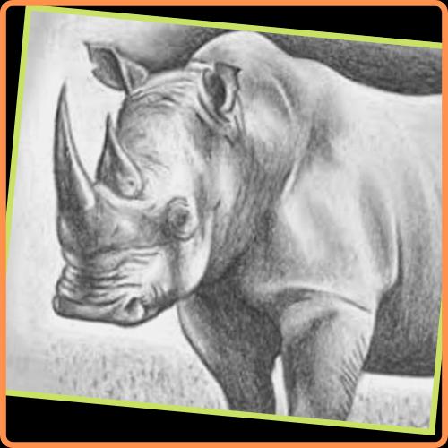 dibujos de animales hecho a lapiz