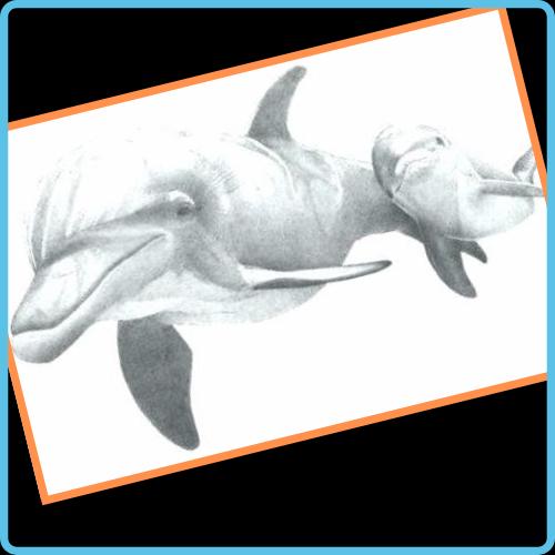 dibujos de animales salvajes a lapiz